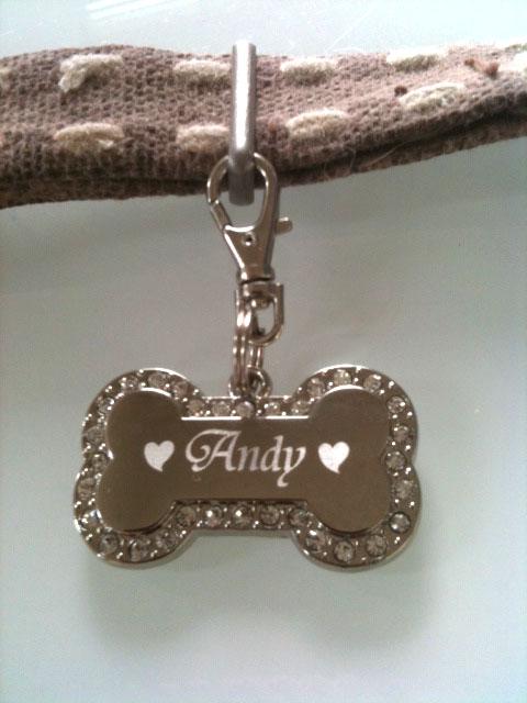 Andyちゃん